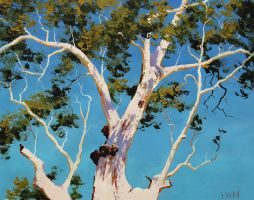 Ghost Gum by artsaus