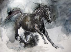 Sketch of a horse by VeronikaBulahova