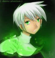 Danny Phantom - f3r LA by Risuko