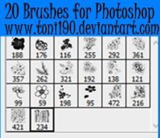 20 Brushes for Photoshop by toni190