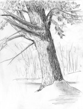 Snow Tree 2 by Duncan-Eagleson
