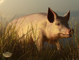 The Pink Pig by deskridge