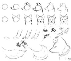 How-To-Draw Wolves Part 2 by DogWolf129