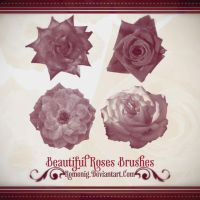 Lovely Roses Free Photoshop Brushes by Romenig