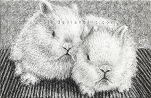 White bunny year 2011 by Docali