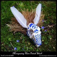 Moongazing Hare Skull Fetish by Lolair
