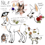 Nil Reference by magniloquente