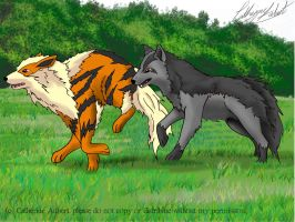 Arcanine and Mightyena by shadow-of-insanity