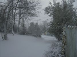 Driveway during snowstorm by blackthornsos