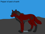 Pepper of the pack of earth by catunicorn5841