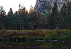 Autumn Reflection on Merced River II by Synaptica