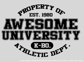 'Awesome University' T-Shirt by kevinbolk
