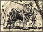 Charcoal Tiger Cub by beldarr