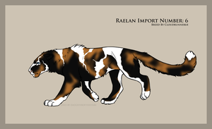 Import 6 by Astralseed