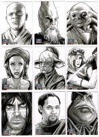 Star Wars Galaxy 7 sketchcards 11 by Frisbeegod