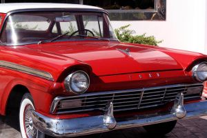 Ford III by Amy-Lou-Photography