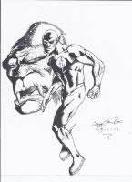 The Flash and Grodd!! by craig1992