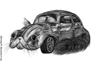 fluffy VW by vasodelirium