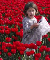 Babe Among The Tulips I by Photos-By-Michelle