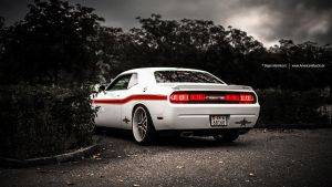 White Dodge Challenger by AmericanMuscle