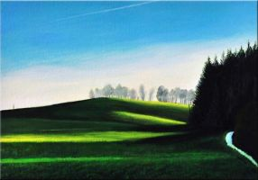 late afternoon light Bavaria summer by Artisan30