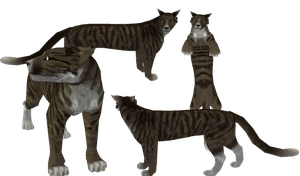 Tabby / Toyger Preset Mix! c: by Mortemire