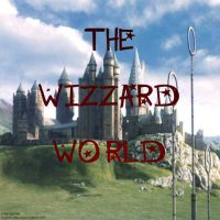 The wizzard world by pollyaug00