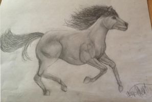 I Drawed a Horsey by XxTheShatteredxX