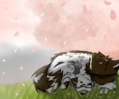 .: Sleeping Under The Cherry Tree :. by Pipilia