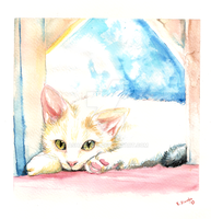 Framed Kitty watercolours by Asharah89