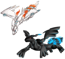Reshiram and Zekrom -request- by AminoNoodle