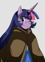Time Skip MLP: Twilight Sparkle by ss2sonic