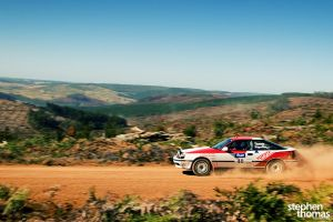 09 Forest Rally - II by esemte