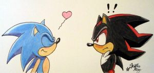 Sonic x Shadow by SkittlesKing