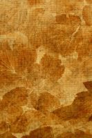 TEXTURES 35 by Inthename-Stock