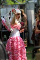 Castlefest 2014 06 by pagan-live-style