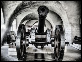 Cannon by Buxtheone