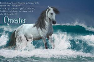 Quester by HorseWhisperer101