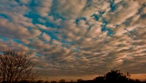 Day Ninety Three: The Beauty of Clouds by Kaz-D