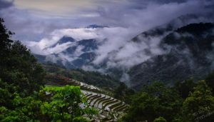 Sapa Terraced Paddies by Fusion-Fire-GFX