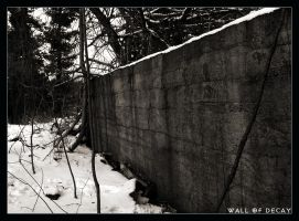 Wall of Decay by dhuusaraH