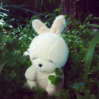 can't find 4leave clover by moshmoshak