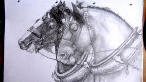 Draft Horses drawing by IncredibleNacho