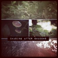 Chasing After Shadows by Travis-Bridevaux