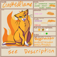 Crookedflame, Snowclan Medicine Cat by BrindlefurLd