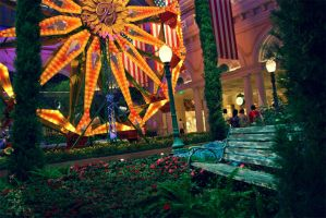 Bench at the Bellagio by renonevada