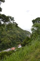 The smaller village of Martinique Grand Riviere by A1Z2E3R