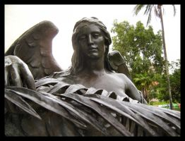 Don't Blink by Pianochick66