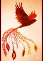 My Little Phoenix by DundalkChild
