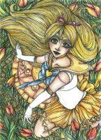 ++ Sailor Venus ++ by CathM
